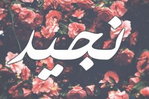 معنى اسم نجيد Nejad بالتفصيل
