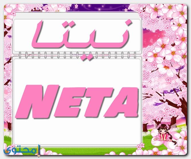 صفات حاملة اسم نيتا