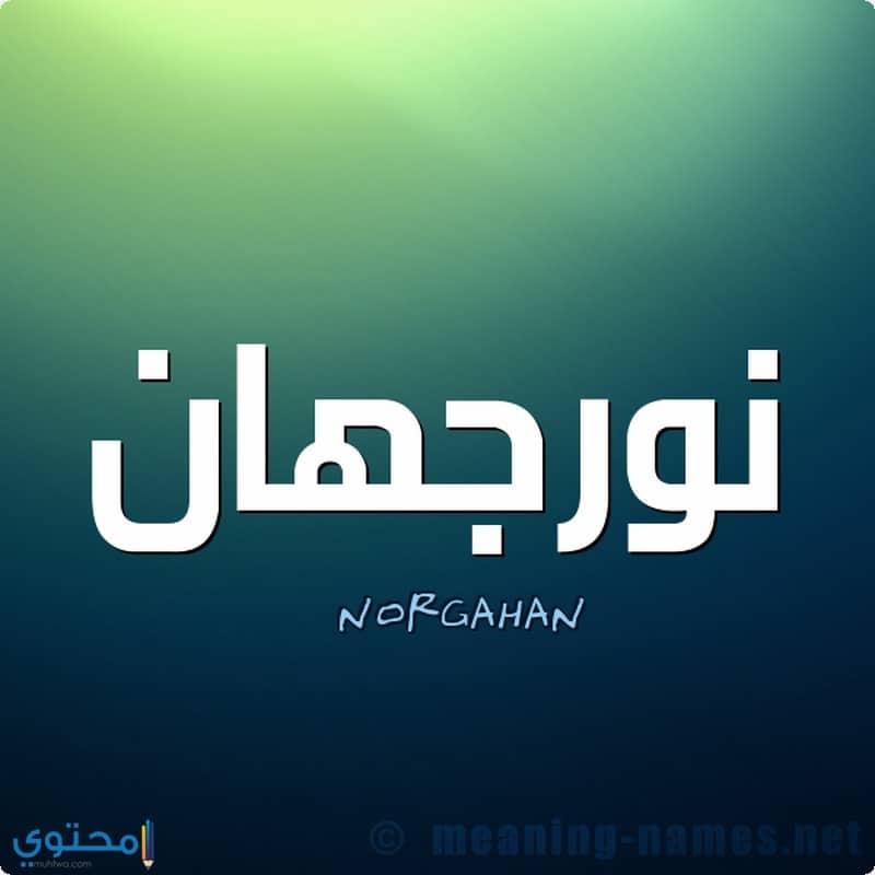 اسم Norghan