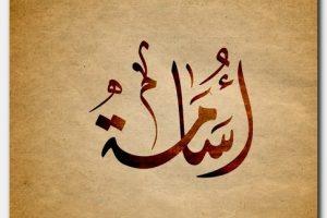 معنى اسم أسامة Osama وشخصيته