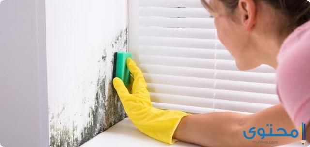 طريقة التخلص من عفن الجدران