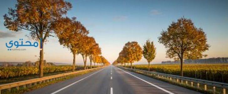تفسير رؤية الطريق أو الشارع فى المنام بالتفصيل