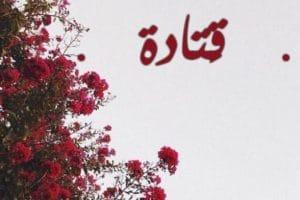 معنى اسم قتادة Qatada بالتفصيل