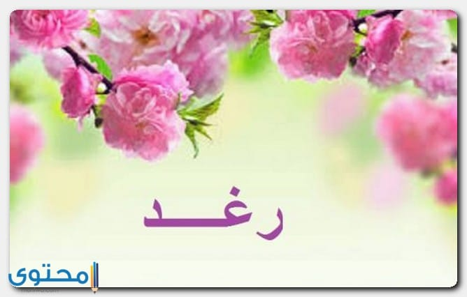 معنى اسم رغد وصفات شخصيتها Raghad موقع محتوى