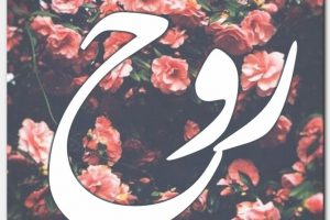 صفات ومعني اسم روح Rouh