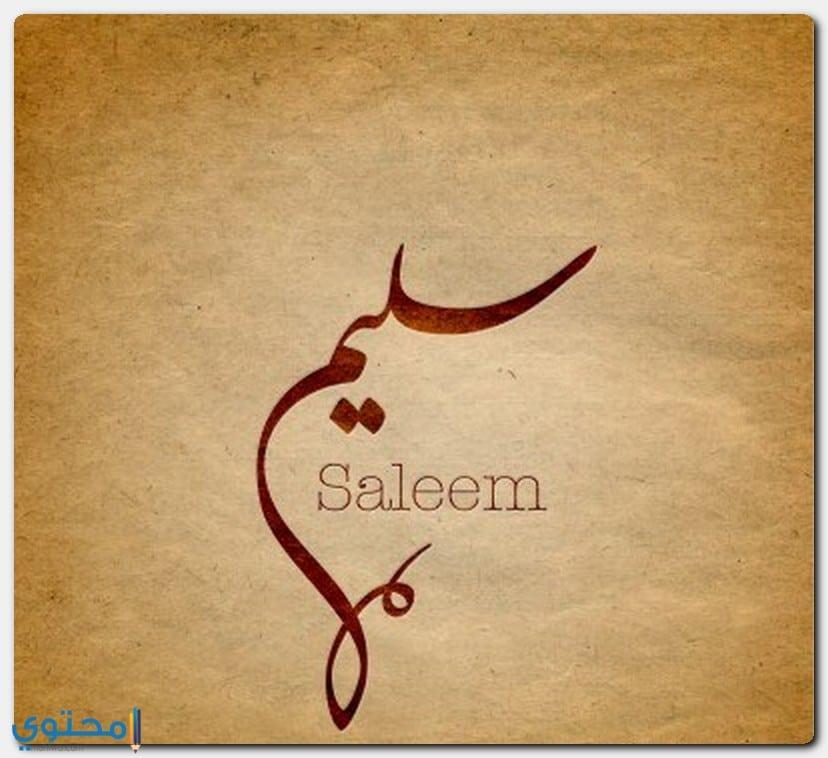 معنى اسم Saleem