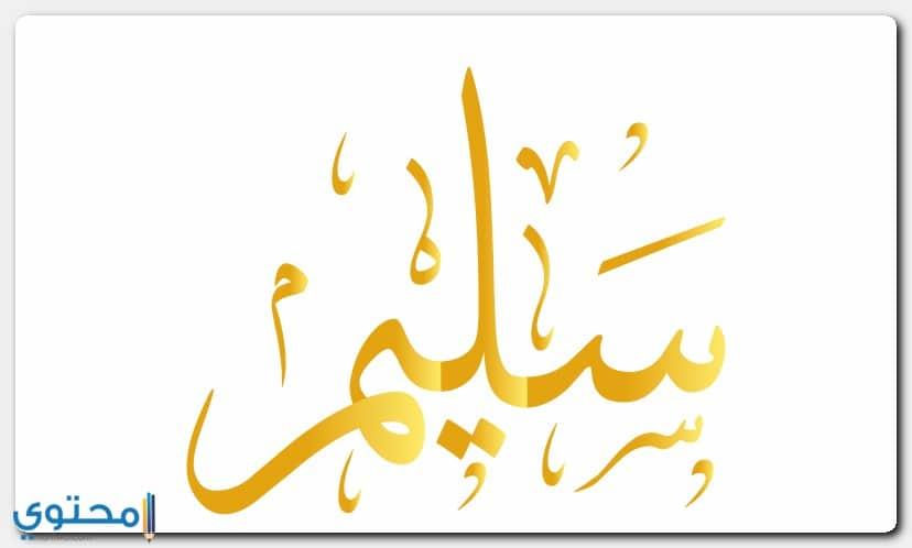 معنى اسم سليم Saleem بالتفصيل