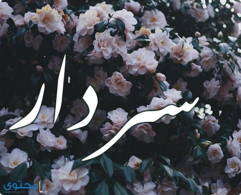 معنى اسم سردار
