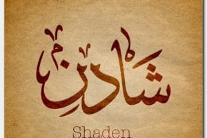 معنى اسم شادن Shaden بالتفصيل