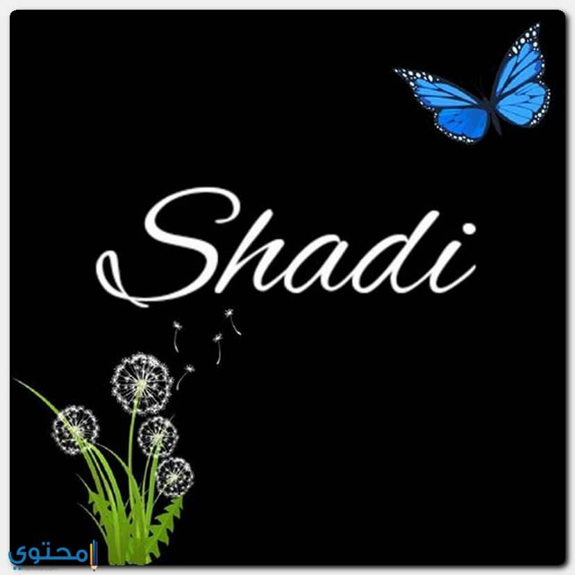 كتابة اسم Shadi بالعربية