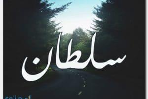 معنى اسم سلطان وصفاته