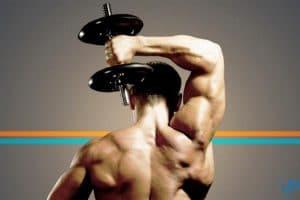 اقوي تمرينات عضلة التراي بالصور