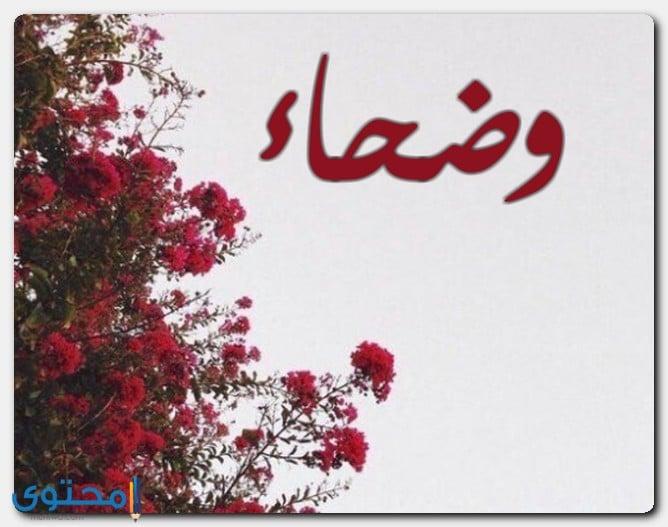 اسم وضحاء في الإسلام