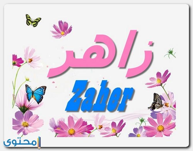 صفات حامل اسم زاهر