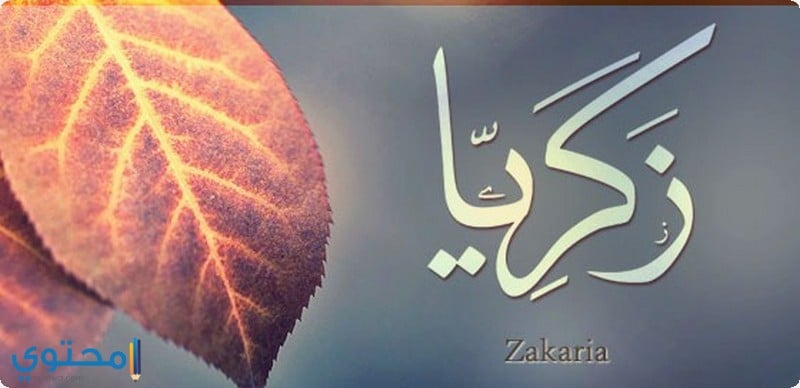 معنى اسم زكريا