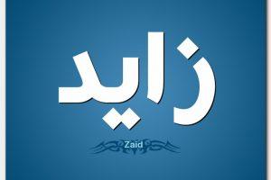 معنى اسم زايد حسب علم النفس