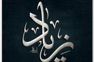 معنى اسم زياد Zeyad وشخصيتة