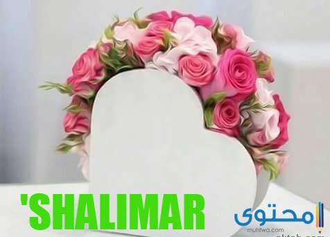 معنى اسم شاليمار