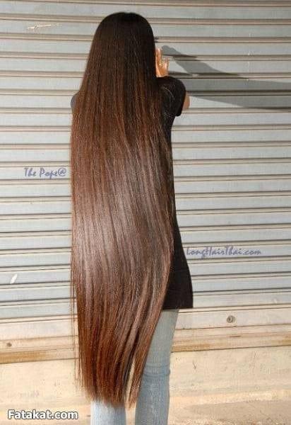8a7da67fd تفسير حلم الشعر الطويل في المنام