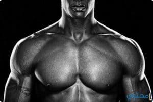 تمرينات تضخيم عضلة البنش