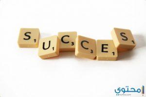 أشهر أقوال الفلاسفة عن النجاح