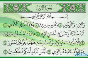 ما يستفيده المسلم من تلاوة سورة التين