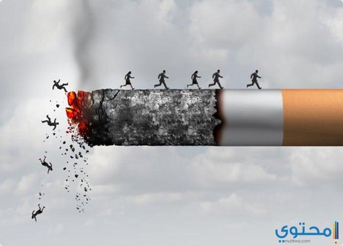 كلمات وأقوال عن التدخين وسلبياته موقع محتوى