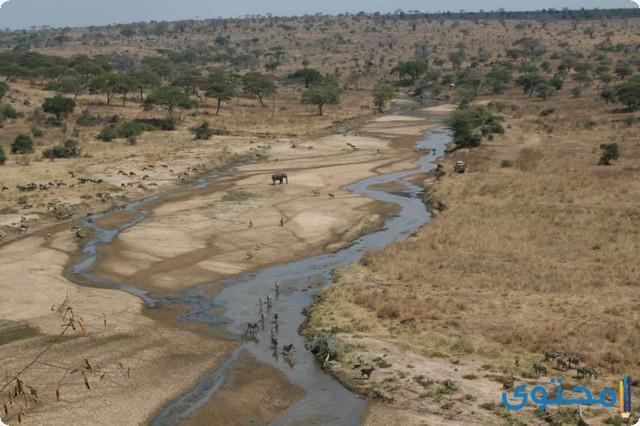 تفسير الاحلام والرؤي الجفاف في المنام