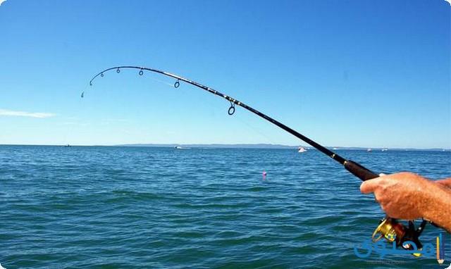 تفسير الاحلام والرؤي الصيد في المنام