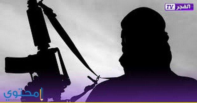 برامج وتقارير قناة الفجر الجزائرية