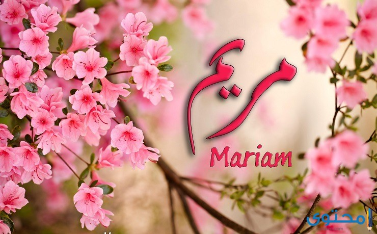 معنى اسم مريم
