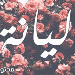 اسماء بنات بحرف اللام حديثة 2019