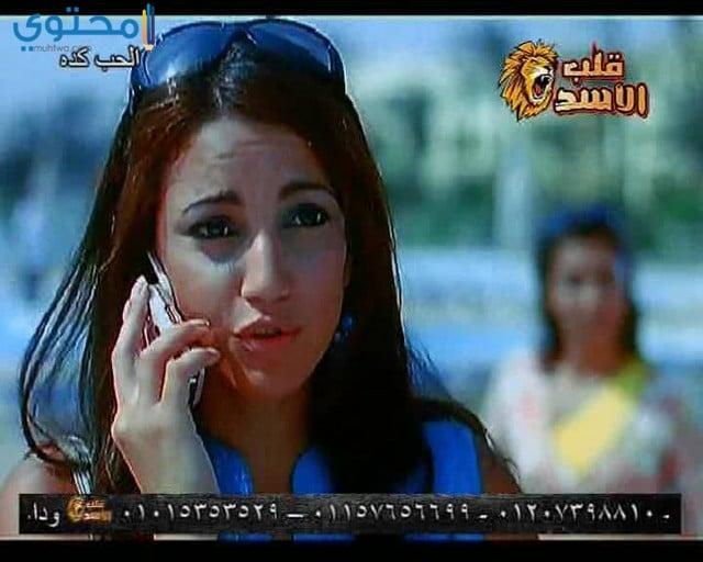 تردد قناة قلب الأسد للأفلام 2021 Qalp Elasad TV علي النايل سات - موقع محتوى