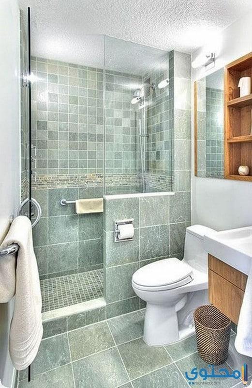 حمام صغير باللون الاخضر